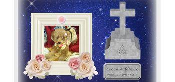 ココアのお墓|ペットロス虹の橋へ2.jpg